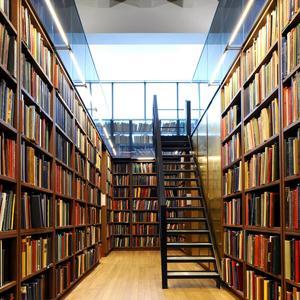 Библиотеки Подгорного